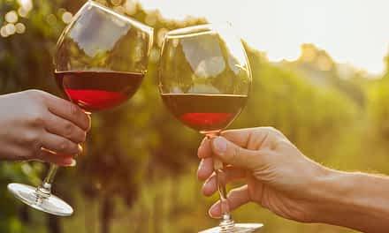Rotwein ayurvedisch genießen
