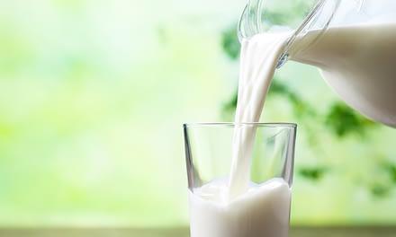 Die Milch macht´s