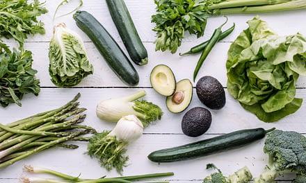 Vegetarisch für Anfänger