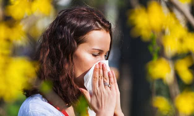 Heuschnupfen – Ursache und Behandlung aus ayurvedischer Sicht
