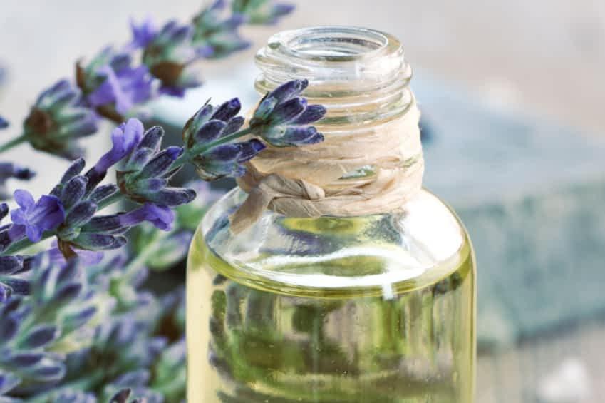 Ayurvedische Öle mit europäischen Heilpflanzen
